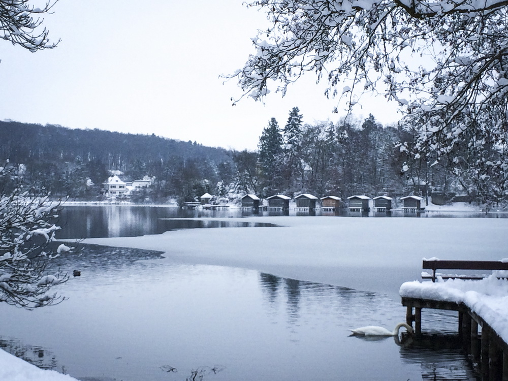 ah_winter06